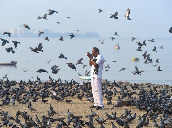 संक्रमण के बढ़ते खतरे के बीच मुंबई के गिरगांव चौपाटी पर सूर्य को नमस्कार करता एक शख्स।
