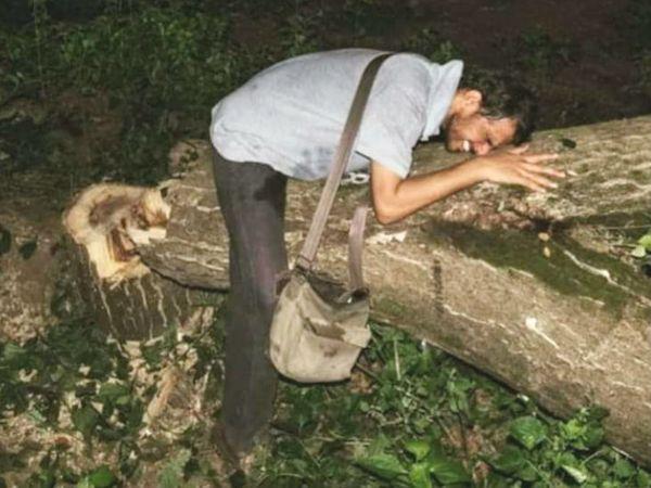 मुंबई स्थित आरे कॉलोनी में शुक्रवार रात से पेड़ काटने की कार्रवाई जारी है। - Dainik Bhaskar