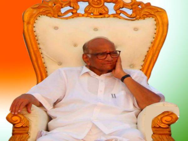 राष्ट्रवादी कांग्रेस पार्टी के प्रमुख हैं शरद पवार-फाइल फोटो - Dainik Bhaskar