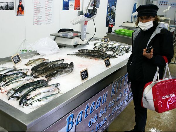 फ्रांस के सिबौर पोर्ट पर मास्क पहनकर मछली खरीदती महिला। प्रधानमंत्री ने मंगलवार को कहा- नए मामले 3 हजार से कम नहीं हुए तो 11 मई से लॉकडाउन में छूट नहीं दी जाएगी।