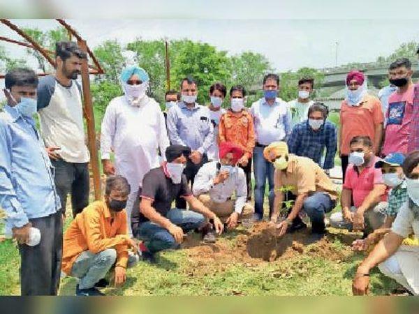 पौधे लगाते क्लब के सदस्य - Dainik Bhaskar
