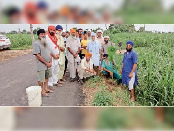 पठलावा-मोरांवाली सड़क पर पौधे लगाते संत बाबा गुरबचन सिंह व अन्य। - Dainik Bhaskar
