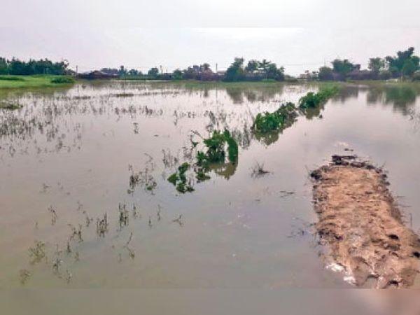 तटबंध के अंदर गांव को जोड़ने वाली संपर्क सड़क पर लगा पानी। - Dainik Bhaskar