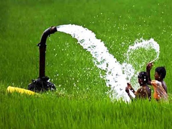 सर्वे में लघु जल संसाधन व जल संसाधन विभाग की सिंचाई सुविधा का भी आकलन होगा। - Dainik Bhaskar