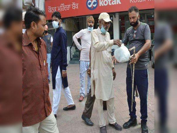 जालंधर के नामदेव चौक पर कार बाजार से सांप को काबू करने के बाद वन विभाग की टीम को सौंपते बुजुर्ग। - Dainik Bhaskar