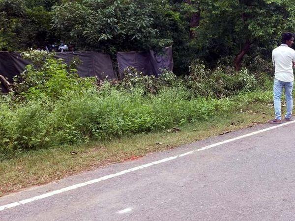 बेतला-महुआडांड़ मेन रोड के बगल में हथिनी का शव मिला।