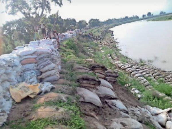 बारिश के बाद नदी के तटबंध से गायब बालू का बोरा। - Dainik Bhaskar