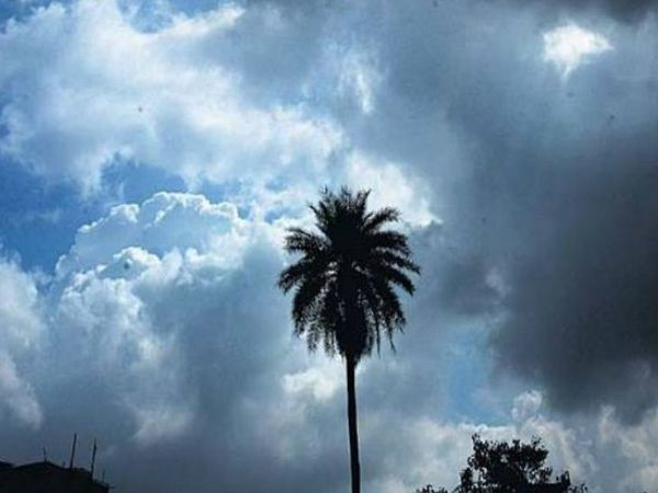 फाइल फोटो। - Dainik Bhaskar