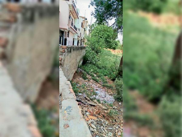 सिरसा। शहर की बंसल कॉलोनी में खाली प्लॉट में जमा बरसाती पानी और आसपास लगे कूड़े के ढेर। - Dainik Bhaskar