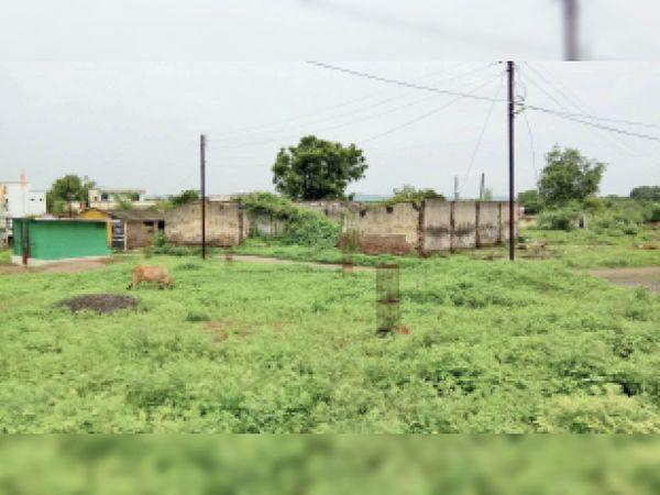 नेपा मिल के पीडी क्वाटर्स में अवैध कब्जे हो रहे हैं। - Dainik Bhaskar