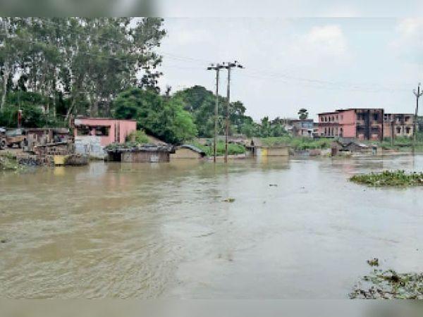 डुमरा के कैलाशपुरी पुल के पास घरों में घुसा बाढ़ का पानी। - Dainik Bhaskar