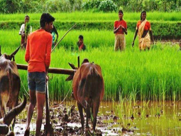श्रम मंत्री संतोष गंगवार ने पीएचडीसीसीआई के कार्यक्रम में कहा कि मोदी के 2014 में प्रधानमंत्री बनने के बाद से गांवों, किसानों, गरीबों और एग्रीकल्चर का लगातार विकास हुआ है - Dainik Bhaskar