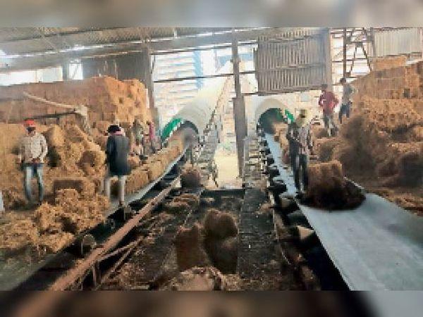 कुरुक्षेत्र | बायोमास पावर प्लांट में पराली से बिजली तैयार करते कर्मचारी। - Dainik Bhaskar