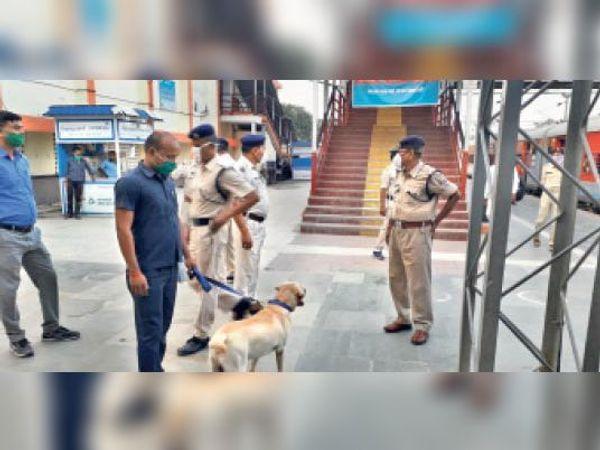 डॉग स्क्वायड टीम द्वारा रेलवे स्टेशन पर यात्रियों के सामान की जांच। - Dainik Bhaskar