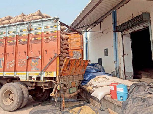 तलाव गोदाम में खड़ा ट्रक जिसमें पुराना बाजरा लोड करके लाया गया। - Dainik Bhaskar