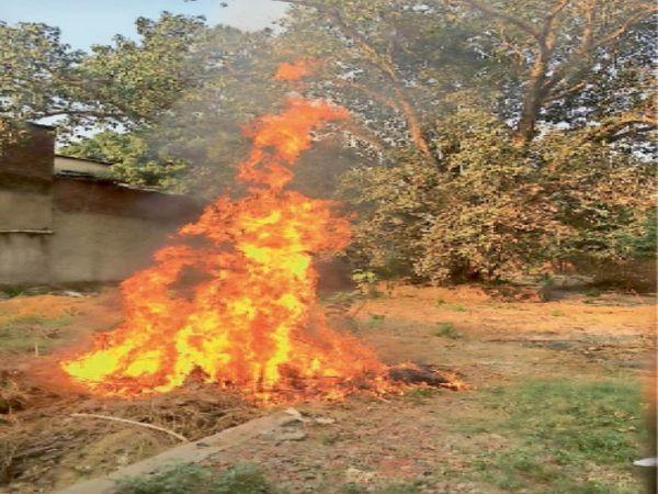 कूड़े को आग लगाने की मनमानी - Dainik Bhaskar
