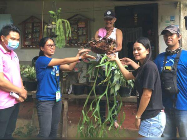 पूरे फिलीपींस में लोग घरों में ग्रीनरी बढ़ाने पर जोर दे रहे हैं।