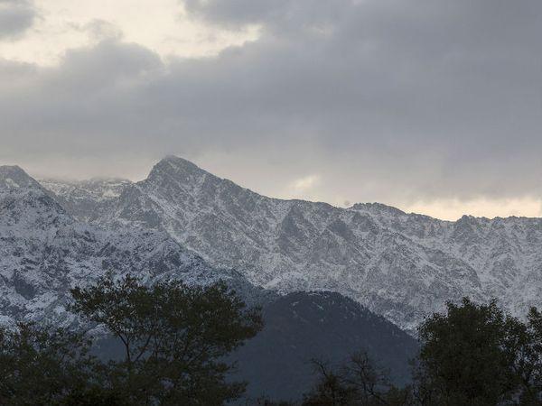 उत्तरी राज्यों के ऊंचाई वाले इलाकों में लगातार बर्फबारी जारी है। धौलाधर रेंज की चोटियां बर्फ से ढंकी नजर आ रही हैं।
