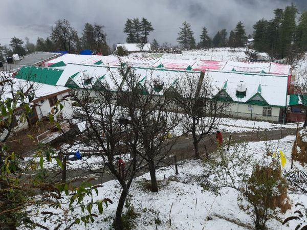 यह तस्वीर हिमाचल प्रदेश के प्रसिद्ध टूरिस्ट प्लेस कुफरी की है। सोमवार सुबह यह पूरा कस्बा बर्फ की चादर तले ढंका नजर आ रहा था।
