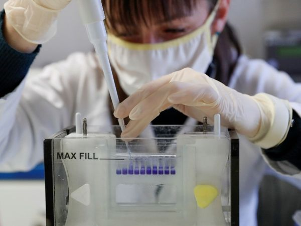 फोटो हंगरी की है। यहां कोविड-19 के वैक्सीन पर काम करती वैज्ञानिक। - Dainik Bhaskar