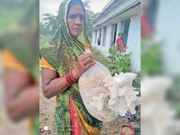 मशरूम दिखाती महिला। - Dainik Bhaskar
