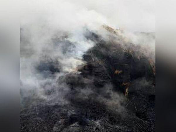 स्टोर किए गए पशु चारे में लगी आग से उठती लपटें। -फाइल फोटो - Dainik Bhaskar