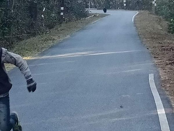 सड़क पर हर आने-जाने वालों को भालू दौड़ा रहा था। इस दौरान दो बाइक सवार भी उसके हमले से बाल-बाल बचे।
