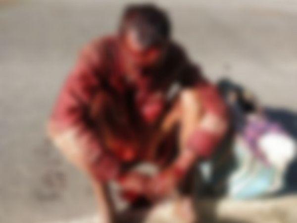 छत्तीसगढ़ के गौरेला-पेंड्रा-मरवाही जिले में मंगलवार दोपहर भालू के हमले से एक बुजुर्ग की मौत हो गई। - Dainik Bhaskar