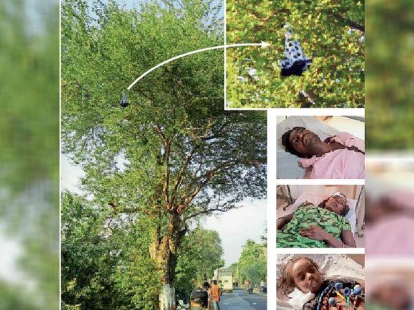 कार से टक्कर के बाद पेड़ की डाली में फंसी बच्ची और इनसेट में घायल उसके माता-पिता और छोटी बहन। - Dainik Bhaskar