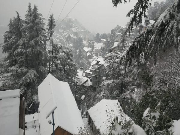 बर्फबारी के बाद मौसम सुहावना बना हुआ है। - Dainik Bhaskar
