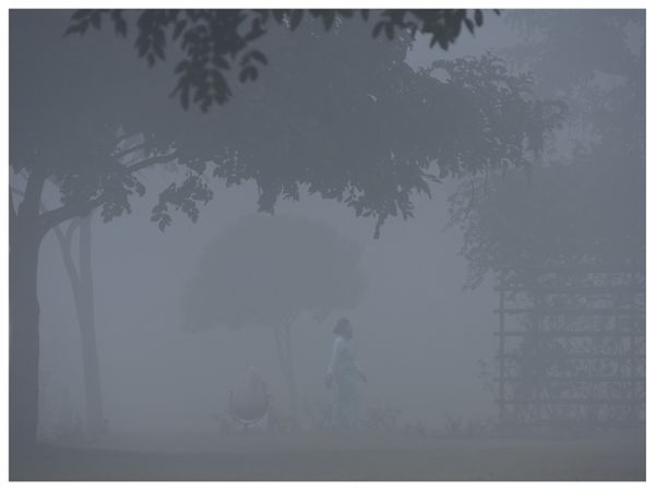 चंडीगढ़ में घने कोहरे के बीच पार्क में टहलते लोग।