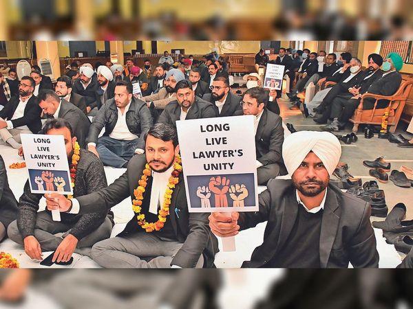 हाईकोर्ट में केसेज की फिजिकल हियरिंग शुरू करने की मांग को लेकर भूख हड़ताल पर बैठे वकील। - Dainik Bhaskar