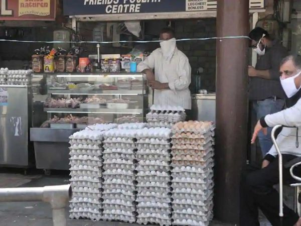 मंगलवार को भी डिपार्टमेंट ने बर्ड फ्लू की सैंपलिंग की है। सेक्टर 21 की मीट मार्केट में कई दुकानों से पोल्ट्री प्रोडक्ट्स के सैंपल लिए गए हैं। - Dainik Bhaskar