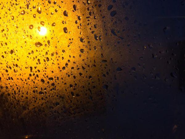 जालंधर में सुबह के वक्त बूंदाबांदी हुई है। - Dainik Bhaskar
