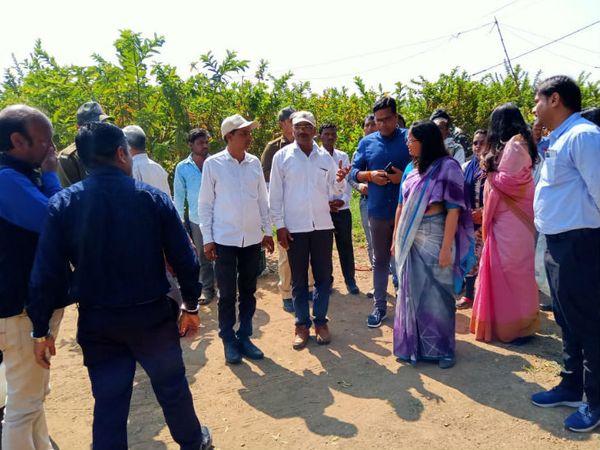 पिछले साल रामचंद्र के खेत पर जिले के कलेक्टर और एसपी भी आए थे। उन्होंने रामचंद्र से उन्नत खेती के बारे में जानकारी ली थी।
