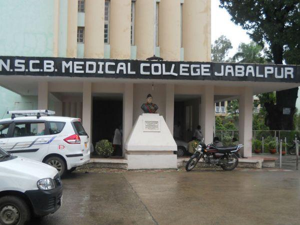 जबलपुर मेडिकल कॉलेज - Dainik Bhaskar