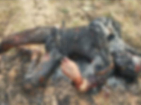 राजधानी रायपुर में एक युवक का जला हुआ शव कॉलोनी के पीछे मैदान में मिला है। - Dainik Bhaskar