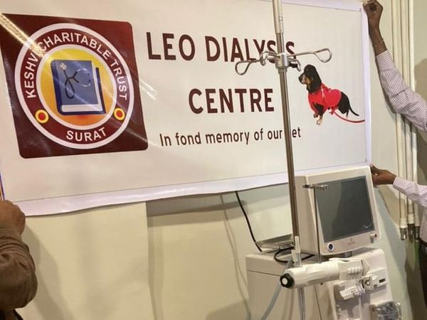 गुजरात का पहला 'पेट डायलिसिस सेंटर' है। - Dainik Bhaskar