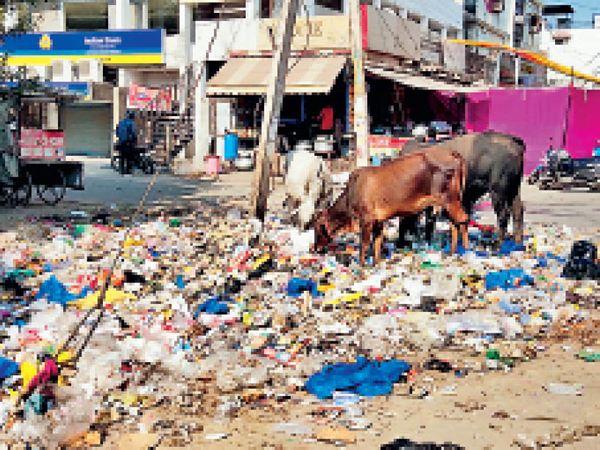एनआईटी पांच स्थित बीके  और नीलम चौक के बीच पड़ा कूड़ा। - Dainik Bhaskar