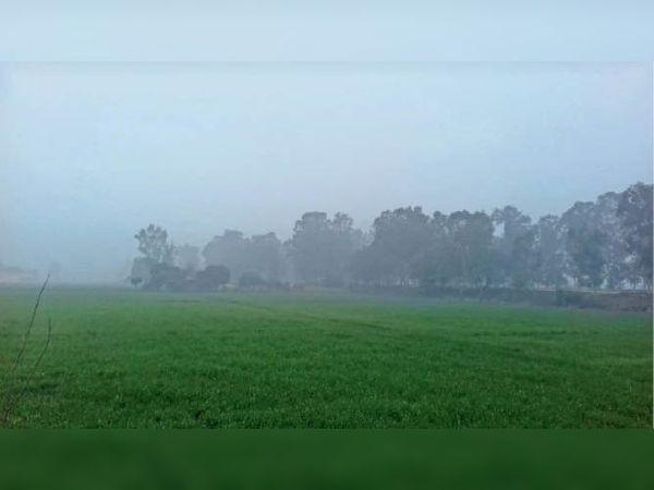 करनाल. सुबह के समय धुंध। - Dainik Bhaskar