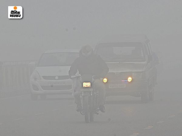 अमृतसर में घना कोहरा छा रहा है। फोटो बुधवार सुबह 10 बजे की है।