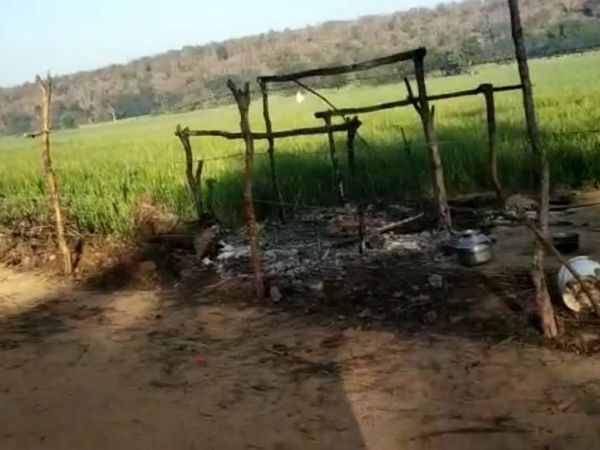 यूपी के ललितपुर जिले में एक झोपड़ी में सोते समय भाई बहन की जलकर मौत हो गई। - Dainik Bhaskar