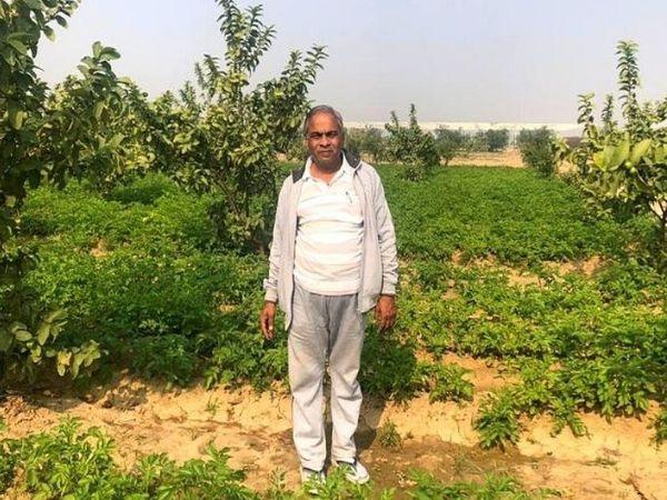 सुरेश का मानना है कि पढ़े-लिखे लोगों को फार्मिंग सेक्टर में आना चाहिए। ताकि किसानों को भरोसा मिले, उन्हें सही तरीके से गाइड किया जा सके।