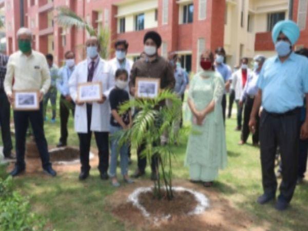 वन महोत्सव दिवस के दौरान स्टाफ ने पूरे PGI में लगाए थे पौधे।