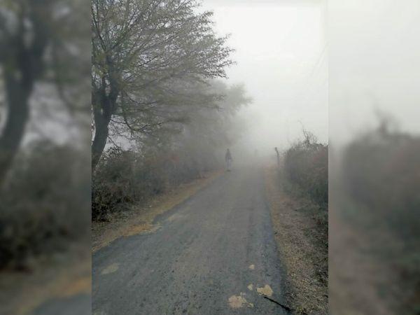 खुरई | तेज ठंड का सिलसिला जारी, सुबह धुंध छाई रही। - Dainik Bhaskar