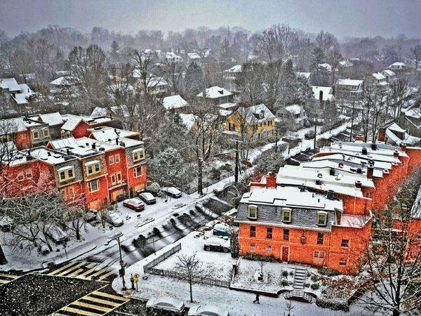 फोटो वॉशिंगटन डीसी की है। यहां हर जगह बर्फ ही बर्फ है। कारों पर बर्फ की चादर पड़ने से लोगों को काफी परेशानी उठानी पड़ रही है। - Dainik Bhaskar