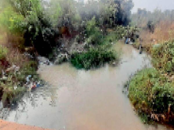 होशंगाबाद। पहाड़िया के पास नहरों से फिजूल पानी बहकर नाले में जा रहा है। - Dainik Bhaskar