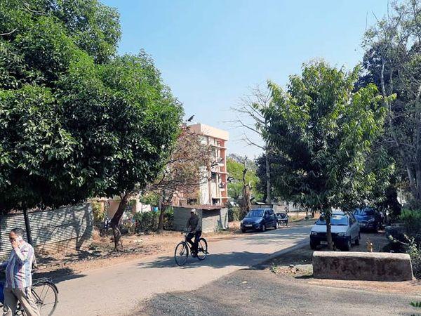 राजधानी रांची में रविवार को खिली धूप ने लोगों को ठिठुरन से राहत महसूस कराई। - Dainik Bhaskar