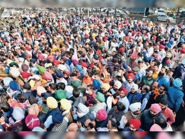नगर निगम चुनाव - Dainik Bhaskar