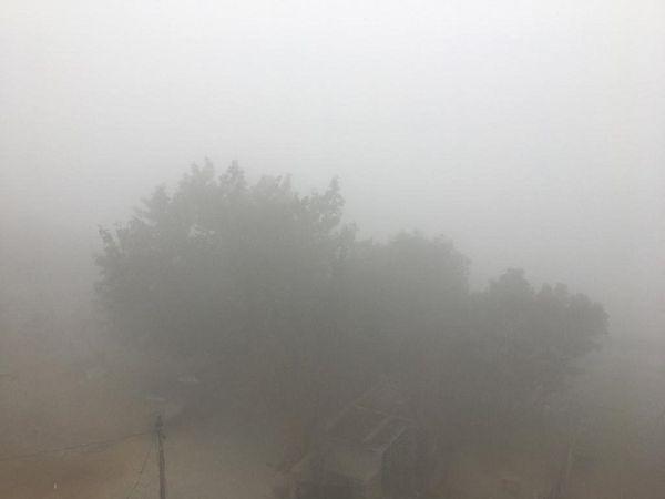 पानीपत में छाया घना कोहरा। - Dainik Bhaskar